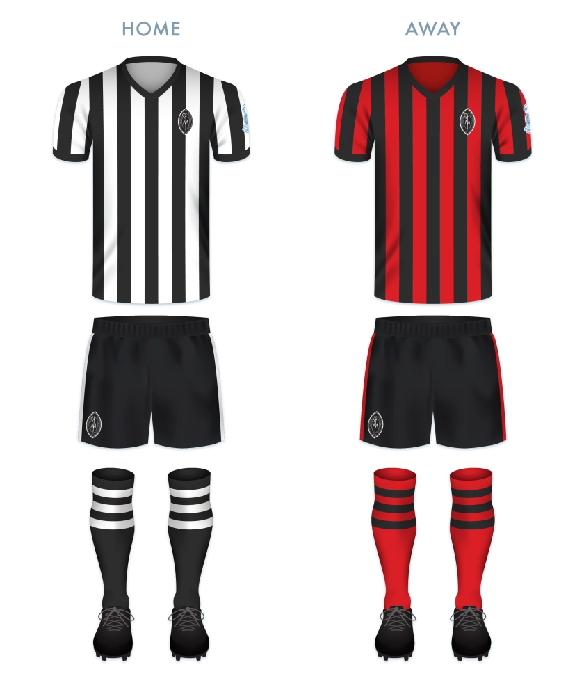 SMFC kit-01