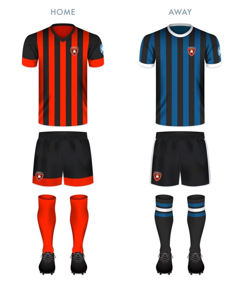DSFC kit-01